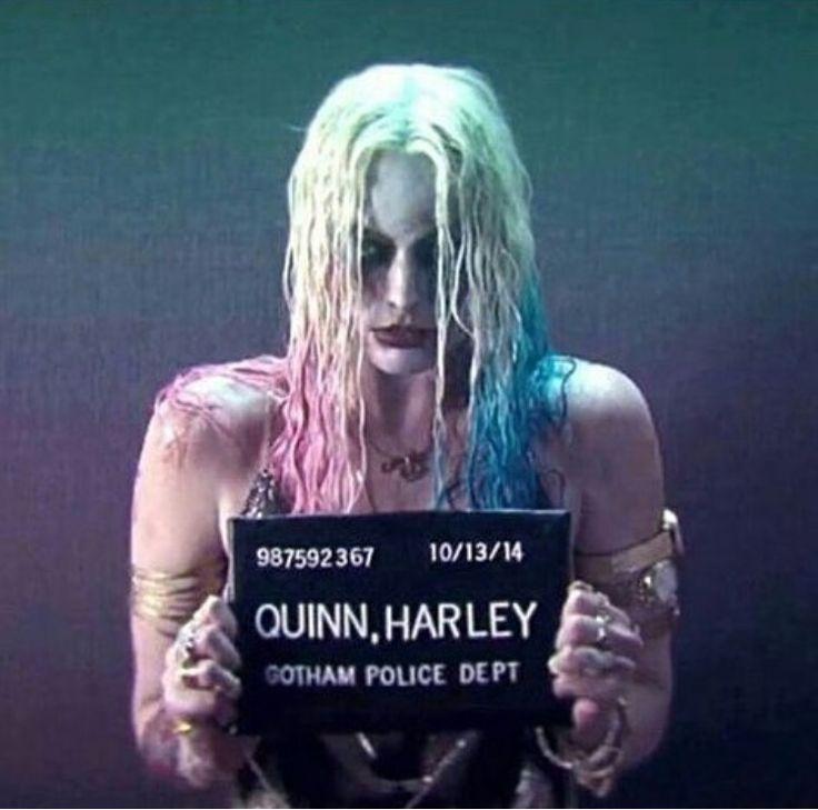 Harley Quinn ♦️♠️ BATSY BATSY BATSY ♦️♣️