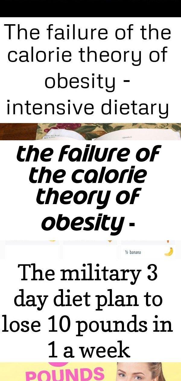 Pin On Obesity