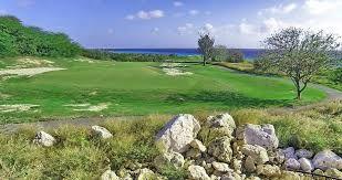 Znalezione obrazy dla zapytania collioure golf