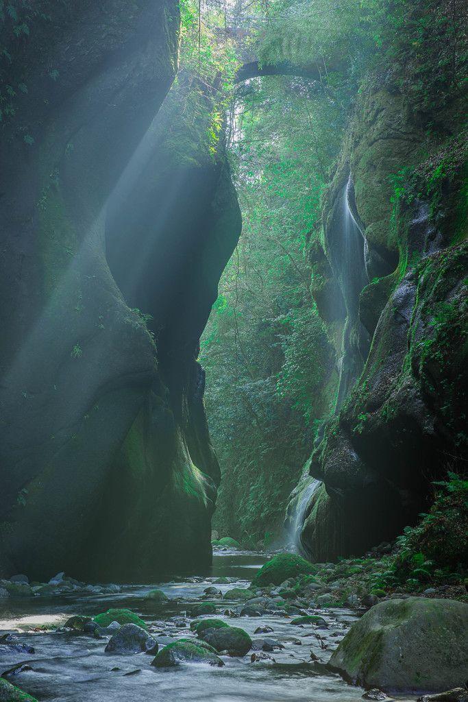 Yufu River Gorge, Oita, Japan #緑 #Green