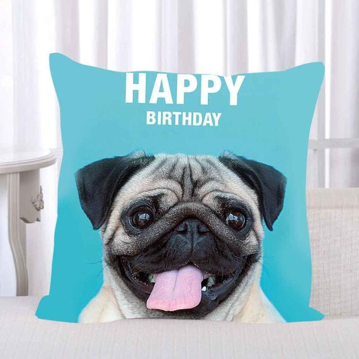 Happy Over The Hill Birthday Birthday Humor Dog Card: 1000+ Ideas About Happy Birthday Pug On Pinterest