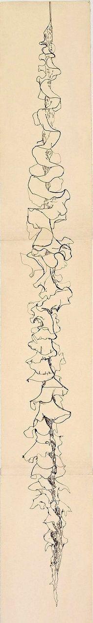 Ellsworth Kelly: Seaweed, 1949.