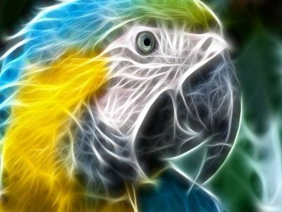fondos de pantalla en 3d con movimiento para descargar gratis