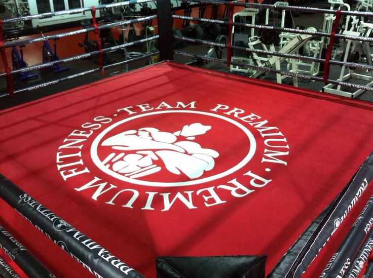 Hand painted boxing canvas for Premium Fitness.