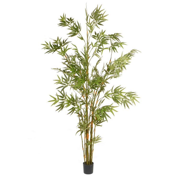 Artificial Potted Japanese Bamboo Tree Green 6 Ft. - National Tree Company