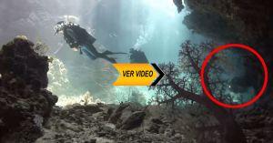 ¡Sé que a veces te ha pasado la interrogante por la cabeza de que sucede de bajo del mar o que puede a ver en ese inmenso mal!