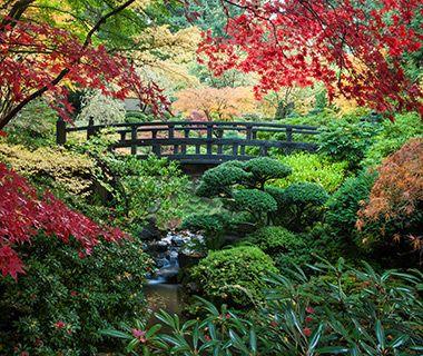 America's Most Beautiful Gardens: Portland Japanese Garden