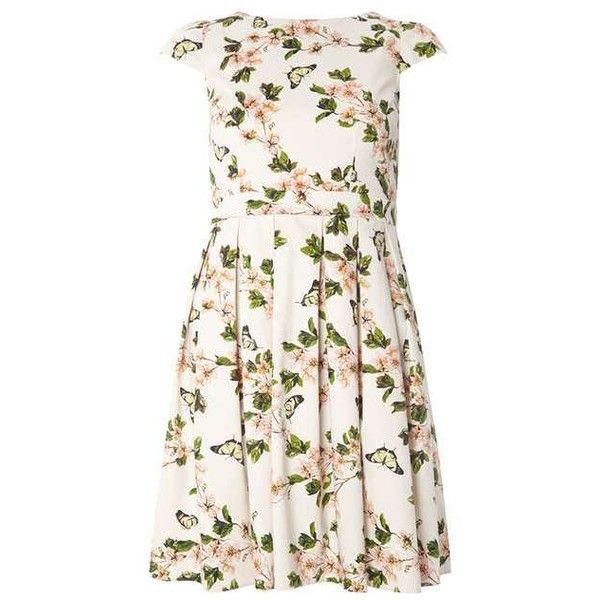 Petite White Butterfly Print Prom Dress - View All New In - New In -... ❤ liked on Polyvore featuring dresses, white prom dresses, dorothy perkins, white day dress, white color dress and petite white dresses