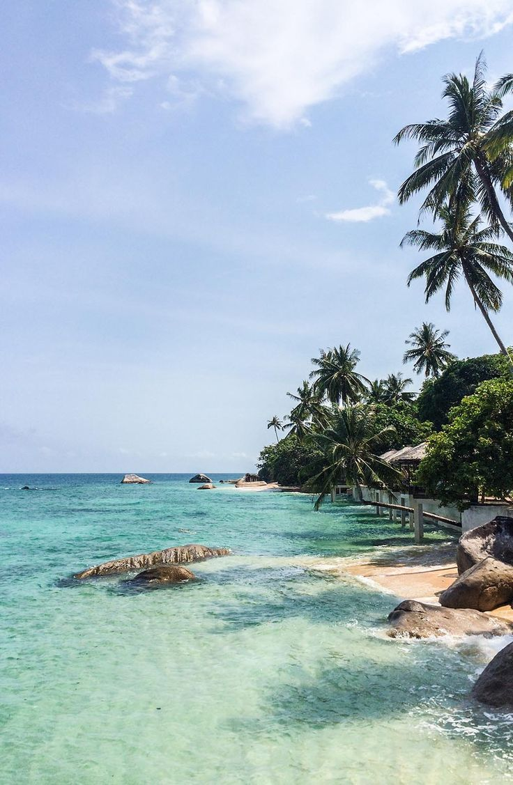 Ready for the ultimate island adventure? Then head to Tioman Island in Malaysia, home of reef sharks, coconut and palm trees, turquoise ocean and the best sunsets. Click the pin for more details on how to get there and what to do once you have arrived in paradise!