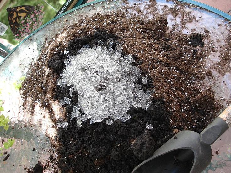 Soilless growing mediums learn how to make your own for Garden soil mix