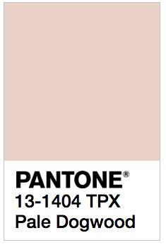 Pantone's 2017 Spring Colors are kale, hazelnut, lapis blue, niagara, primrose yellow, greenery, flame, island paradise, pink yarrow, and pale dogwood.