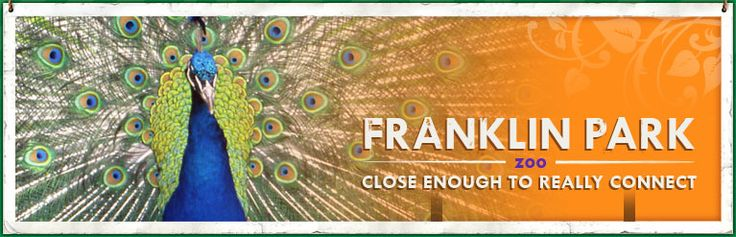 The Franklin Park Zoo is open year round and is a fun place to visit with kids.