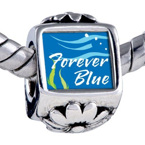 Pugster Bead Forever Blue Beads Fits Pandora Bracelet Pugster. $12.49. Bracelet sold separately. It's the photo on the flower charm. Fit Pandora, Biagi, and Chamilia Charm Bead Bracelets. Unthreaded European story bracelet design. Hole size is approximately 4.8 to 5mm