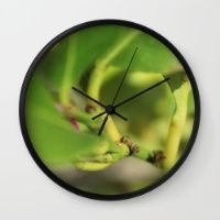Bud Wall Clock Keep time with stylishly designed wall clocks.