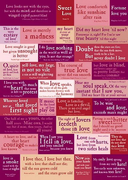 Shakespeare's Love Quotations Exercise Book