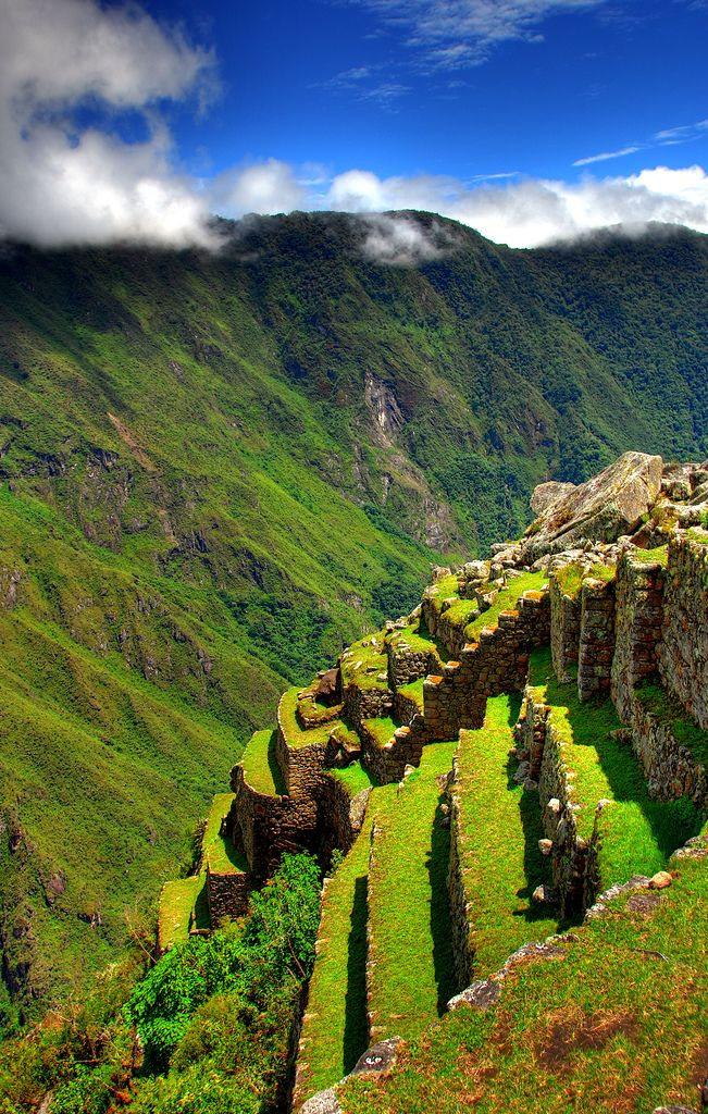 https://flic.kr/p/F6j3H | Cultivated lands at Machu Picchu | Peru. Taken by my wife during her recent trip.