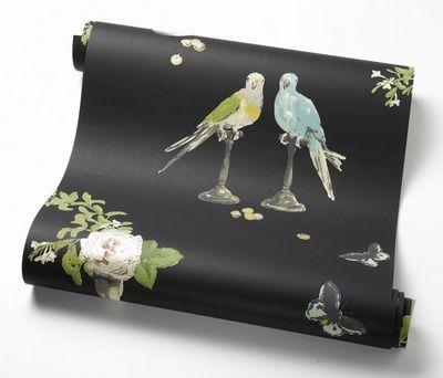 Nina Campbell perroquet wallpaper