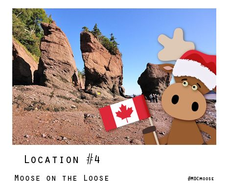 #MDCmoose is taking in the sights across Canada! Help him remember where he's visited for your chance to WIN