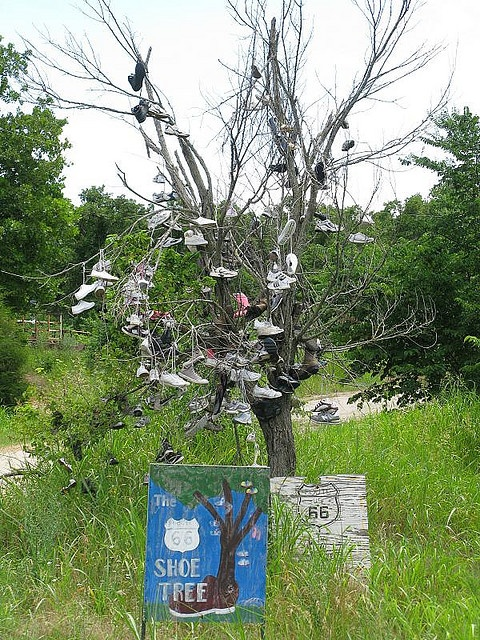 Shoe tree along Route 66, Stroud    This is REAL...I have seen it!!!  LOL