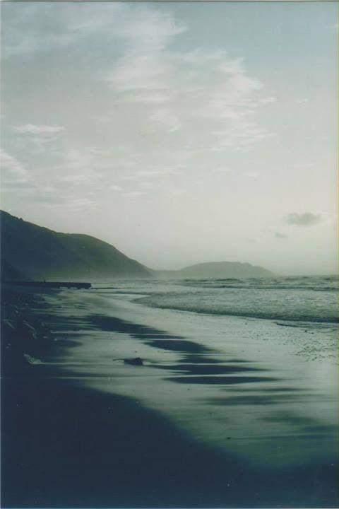 Paekakariki beach New Zealand