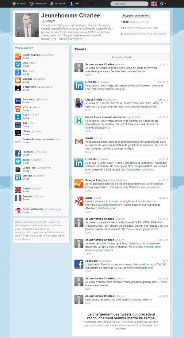 28 best CV insolites images on Pinterest | Creative resume design ...
