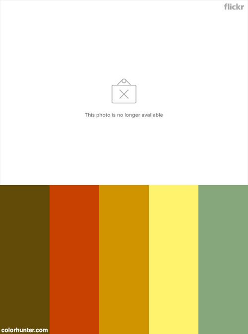 The Photographer Color Scheme