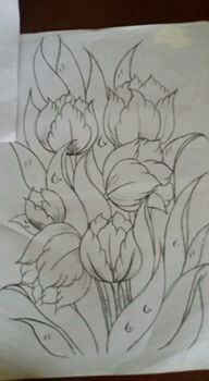 Tulipanes lindos