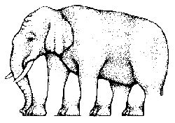 This elephant is missing a leg...or is it?  The artist confuses his  viewer by changing they way our brain is used to seeing things.  It seems the more you look at the elephant, the more confusing it gets.