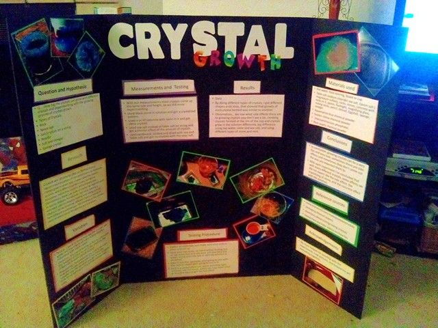 science fair project 4th grade
