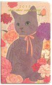 Jetoy Pocket Diary: Chi Chi