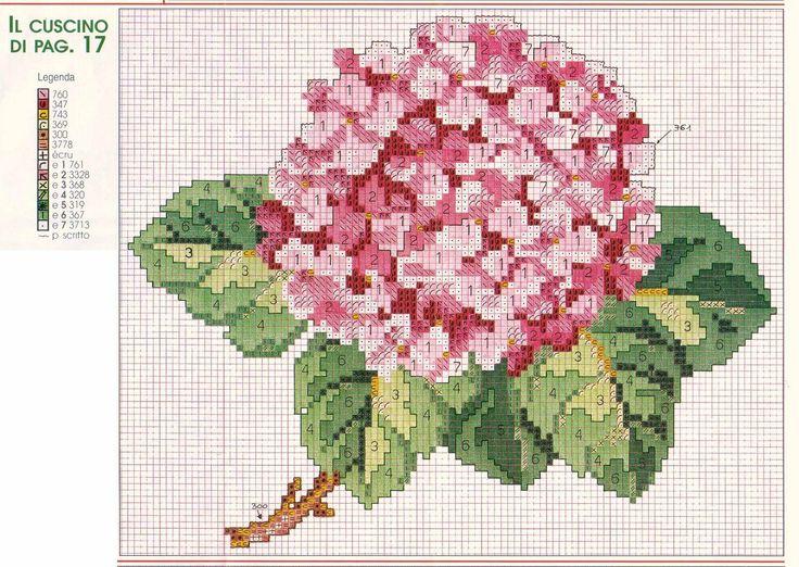pink hydrangea/hortensia pattern & key