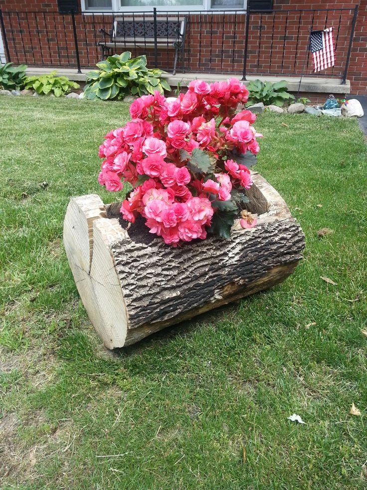 Tree Trunk Flower Pot Gardening Pinterest Tree