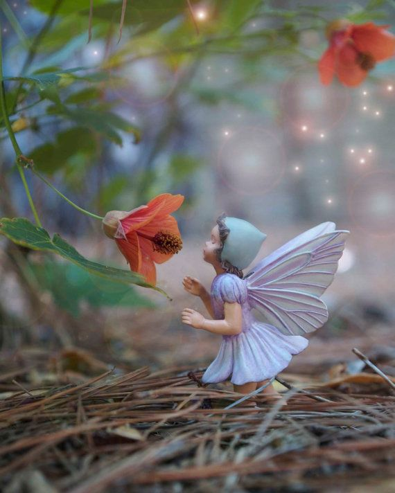201 Best Fairies And The Enchanted Forest Images On