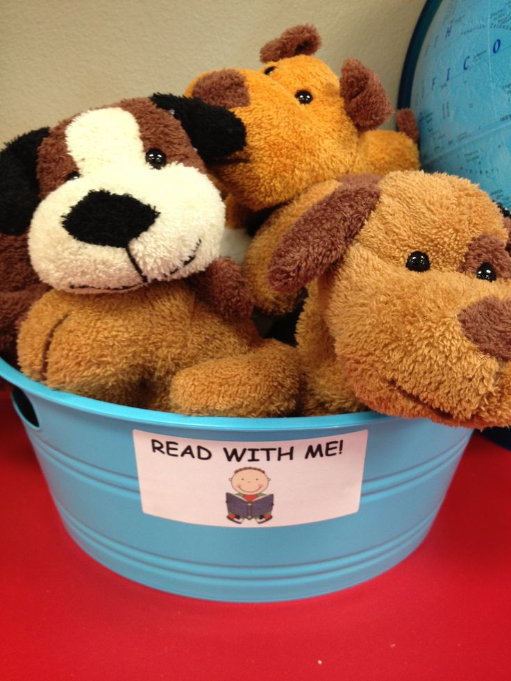 "Classroom library area: these are for the students to be able to read with during read to someone. It goes with the book ""Rocket Learns to Read""."