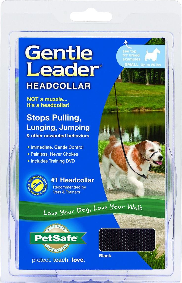 A dog's natural instinct is to pull when tension is on the lead, even if they are choking. Because standard collars and harnesses create this tension when owners pull, the dog pulls in the opposite direction. Because the Gentle Leader Headcollar works like a halter, the dog's head is gently moved in the direction the owner wants it to go. And where the head goes, the body will follow. Because of the placement of the nose loop, the dog immediately understands his/her place in the hierarch...