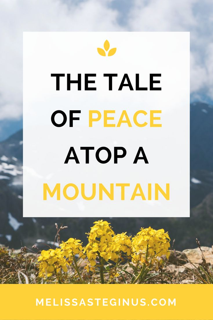 A story of peace I wrote from a mountaintop in Vietnam.