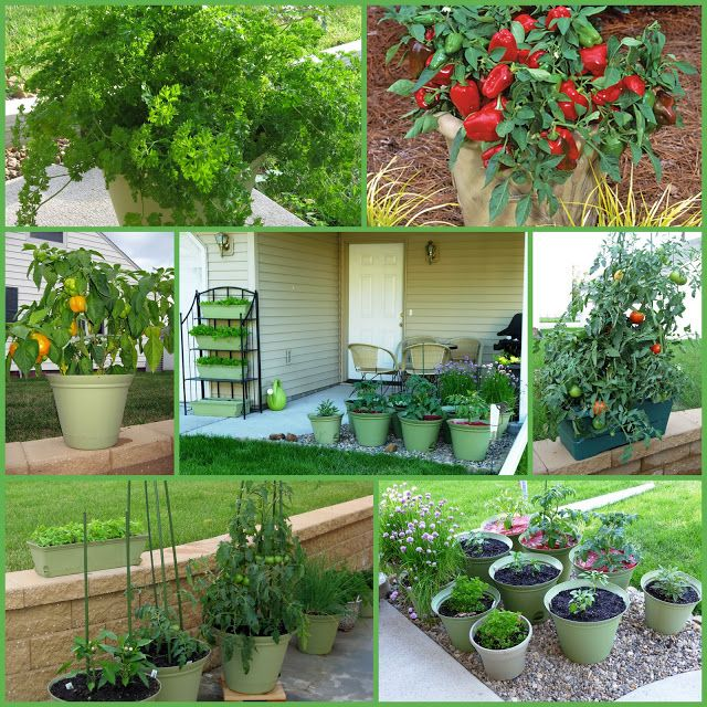 30 Best Images About Kitchen Gardening On Pinterest: 36 Best Iowa History Images On Pinterest