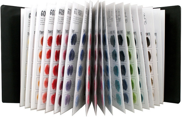 Acid Dyed Source Color Book- 395 dyed samples- AMAZING!