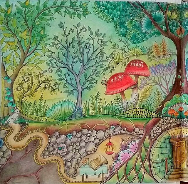 Forest Pictures Johanna Basford Secret Garden Color Pencil Art Prismacolor Adult Coloring Books Colored Pencils Cosmic Markers