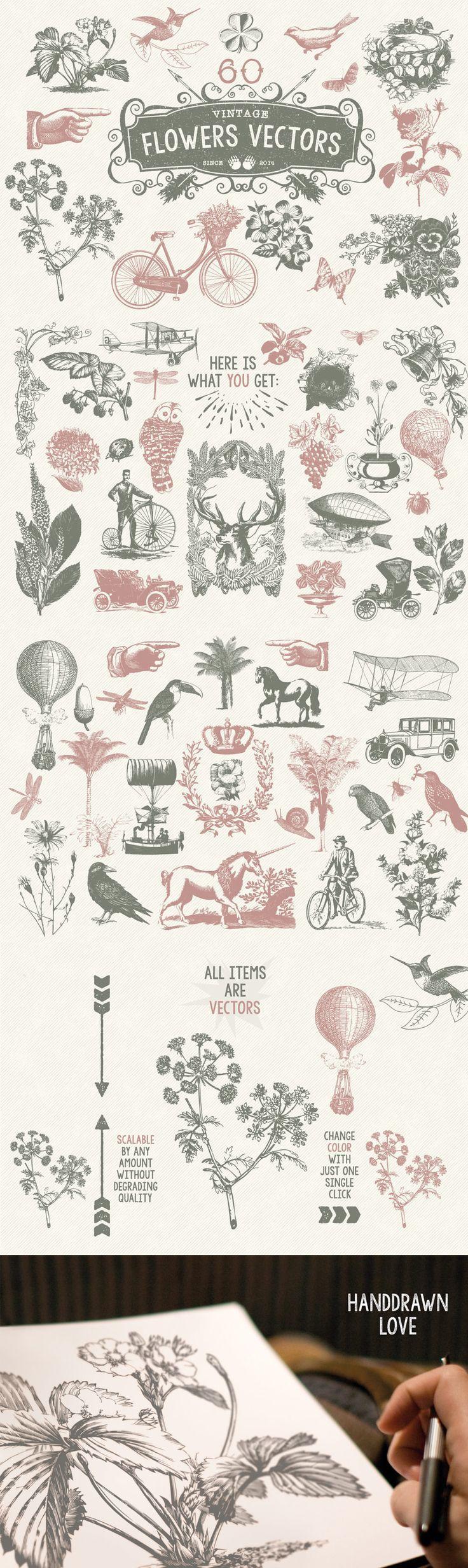 Typography  60 Vintage Flower Vectors by MouseMade   The Comprehensive Creative Vectors Bun