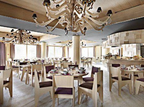 アルタプラ ホテル  フランス