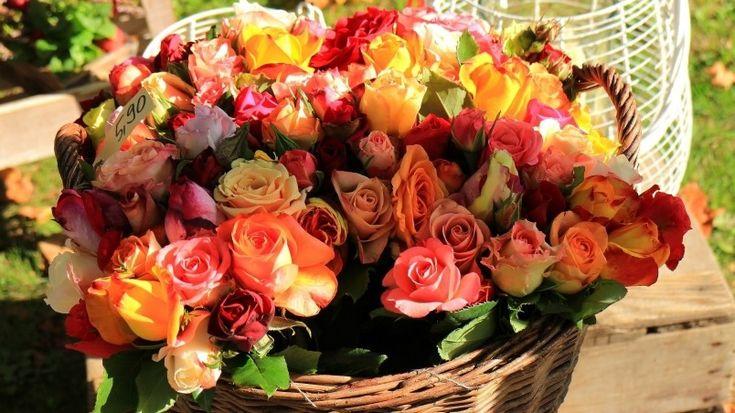 Basket of Roses Wallpaper