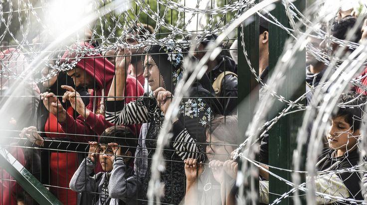 Flüchtlinge : Diese Menschenschwärme Die Flüchtlingsströme stellen uns vor die Systemfrage: Der Kapitalismus und seine Eliten haben abgewirtschaftet. Eine Kampfschrift Von Armen Avanessian