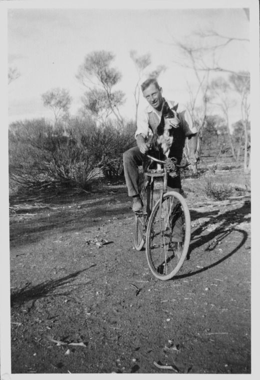 Phil Broadhurst mustering on bicycle, 1942 http://encore.slwa.wa.gov.au/iii/encore/record/C__Rb2361281?lang=eng