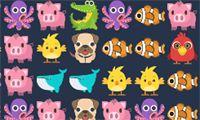 Sweet Connect - Jouez gratuitement à des jeux en ligne sur Jeux.fr