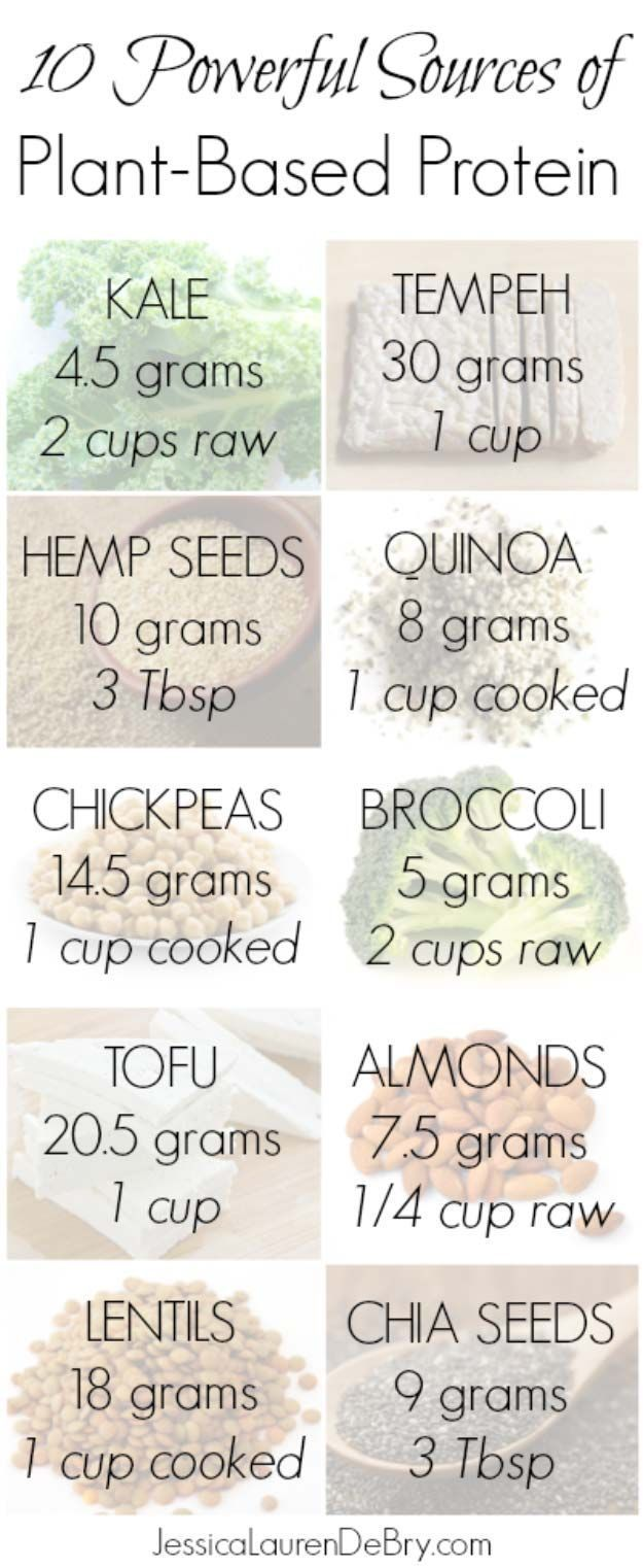 Plant Based Protein | 9 Ways To Eat A More Plant Based Diet For Healthy Happy Homesteading | Healthier and Greener Food Ideas by Pioneer Settler at http://pioneersettler.com/plant-based-diet/