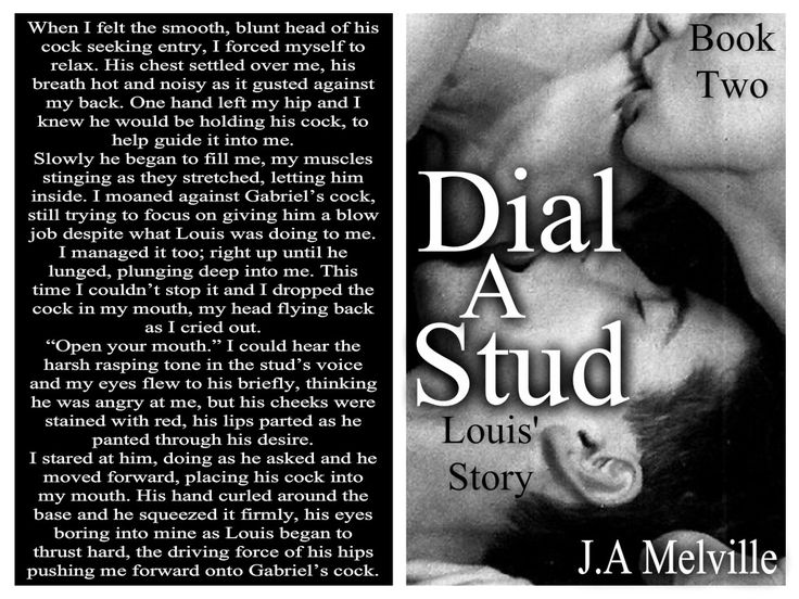 Another teaser from Dial A Stud 2, Louis' Story, my first M/M erotic romance.