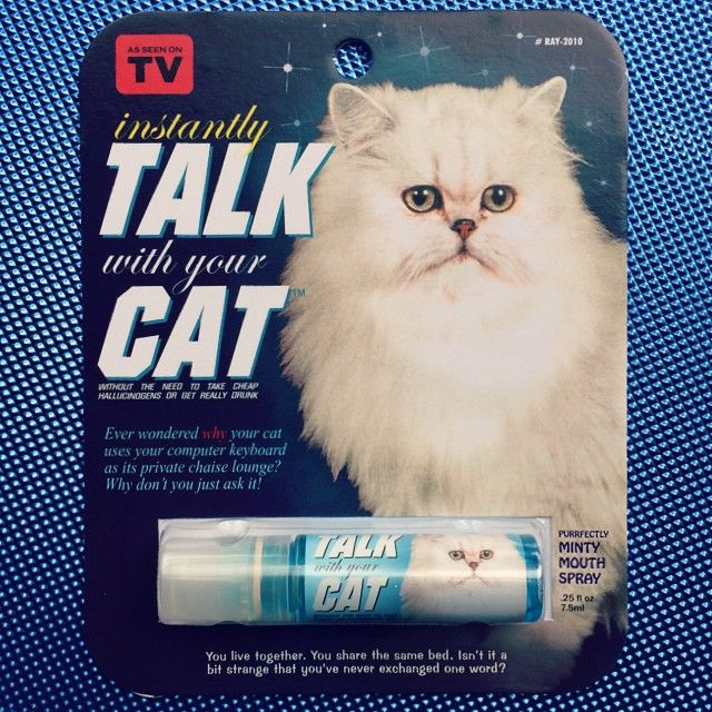 Instantly Talk To Your Cat Breath Spray Say Whaaaaaa Cats