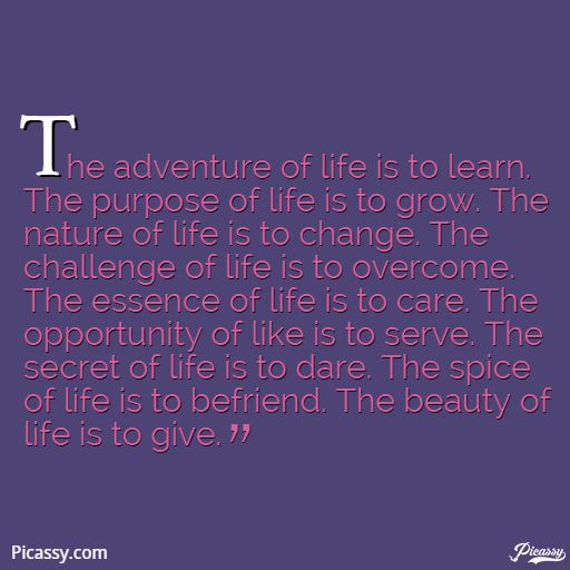 adventure of life is to learn