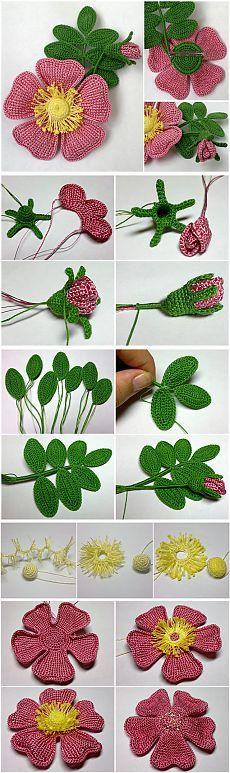 Fructe de Rosa canina tricotate